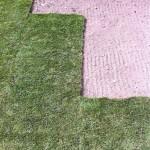 Udførelse af rullegræsplæne